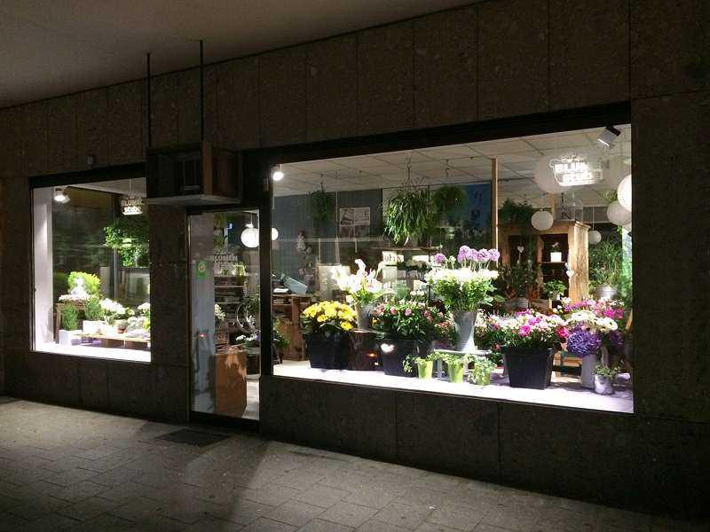 Schienenstrahler VT-Serie - Ausstellung Blumen