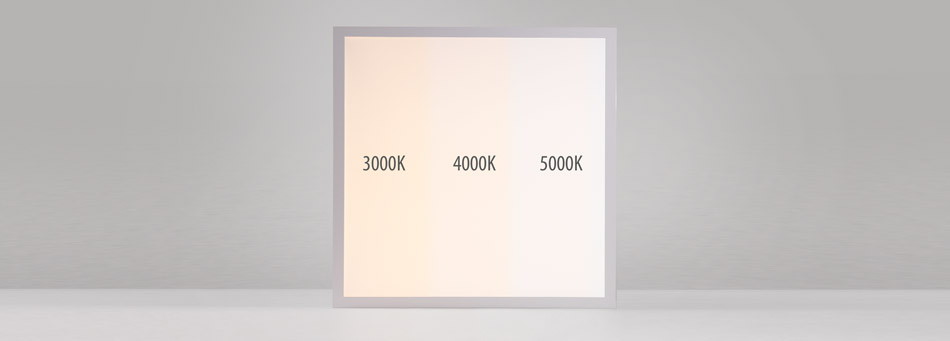 WSH LED Panel LTOP ECO Serie